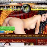 Ladyboy Ladyboy Discount Offer 2018